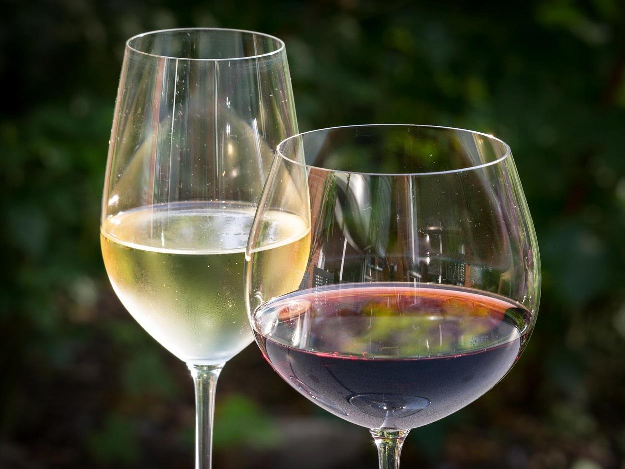 HETibiza winetasting